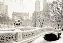 Seasonal Scenes / by Brandi Franzman