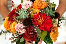 Fall Wedding Ideas / Decore in General: Colors, Flowers, Centerpieces etc / by Jennifer Isaza