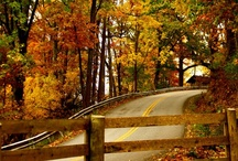 Fall-My Favorite Season / by Susan Starnes