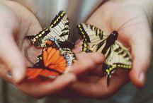 Photos / Best Photos,Travel, Animals  / by Brandi