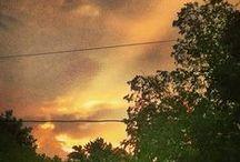 Morning Skies / by Catherine Scott