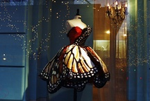 butterflies  / by Becky Birdsong