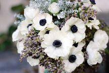 Flowers = Love / by Kaitlin Matthews