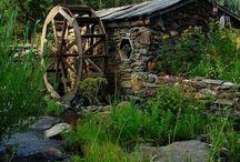 Beautiful  Black Hills! / by Kayla Roling