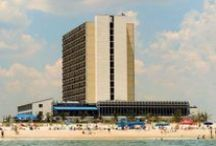 Oceanfront Hotels / Oceanfront Hotels in Ocean City MD  / by Ocean City Maryland - OceanCity.com