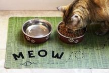 DIY Ideas for your Pets / Reward your furry friends with our creative pet-inspired ideas.  / by Home Made Simple