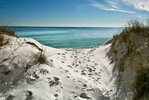 beach / by Barbara Gillispie