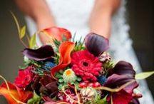 Wedding Ideas / by Maddie Hazen