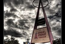 Angels Baseball  / by Natalie A.