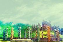 Harry Potter <3 / by Elysa Parks