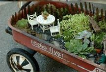 Mini Gardens / by Elysa Parks