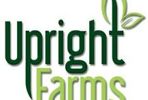 Upright Farms Studio Kitchen / by Kim Jorgensen Gane