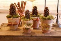 Seasonal - Xmas crafts & decors / by Erika Brandlhoffer