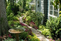 Garden: inspirations  / by Erika Brandlhoffer