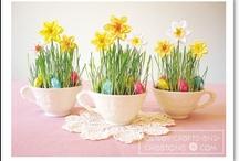 Kids: Easter  / by Erika Brandlhoffer