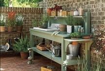Garden: gardening stuff / by Erika Brandlhoffer