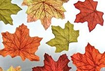 Autumn Fun for Kids / Fall-inspired crafts, activities and games.  It is one of my favorite times of the year! / by Holly Homer