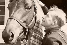 Equine Divine - Fame / Famous faces, both equine and people with equines. / by Andrea Tomich Ohnstad