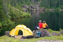 Camping and Outdoors / by Shannon Kennedy-Kahler