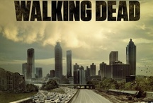 The Walking Dead / A compilation of Walking Dead characters from different web sites and AMC / by Amey Markert