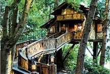 A Writer's Fantasy Treehouses / As an author, I fantasize about having my own cozy, homey treehouse, overlooking a lake. A girl can dream, but even more, I'm making it a goal.  / by Anita Brooks - Author