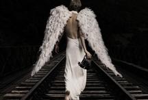 Beautiful Angel / by Rachelle Vaughn
