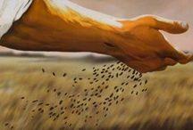Fearfully & Wonderfully Made / Psalm 19:14 / by Dana Loraine