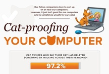 Cat-proof your computer / by SurDoc