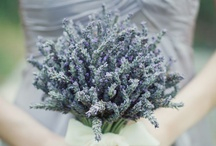 Lavender wedding ideas / by Belle & Chic