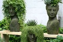 Head Planters and succulents:-)  / by Buster Boo
