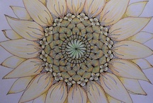 Zentangles / by Dawn Walden