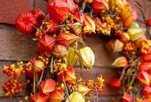 Autumn Wreaths / Wreaths for Autumn / by Cupcakes and Crinoline