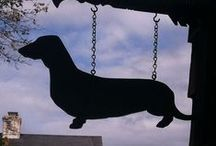 Dachshund Stuff / All sorts of stuff with Doxies on it - Doxie products & paraphernalia!!! / by Stephanie Lackey