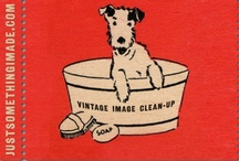 Vintage Clip Art / by Tammy Williams