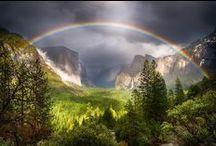 Nature's Beauty II / by Carmen Hansen Schwitzer