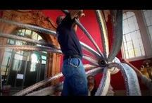 Videos / by Musée océanographique Monaco - Aquarium