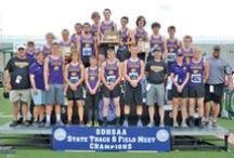 Wildcats / All things relating to the Custer Wildcats. / by Custer County Chronicle