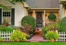Garden and Outdoor / Gardening tips, products, how to, and ideas / by Susan Freeman