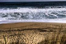 Beach / by Nikki LabEmpress