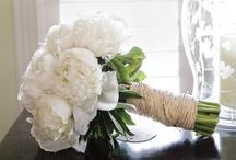 Wedding Colors - White / by invitesbyjen