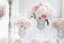 Weddings / by Jennifer Arocha