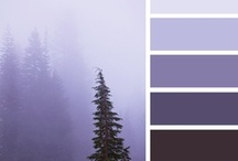 Colour Schemes / by Kristin Starchild