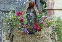 Gardening / by Patti Jensvold