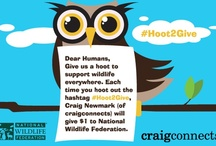 #Hoot2Give / by Craig Newmark