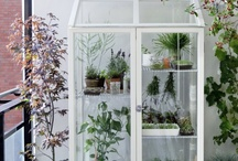 Garden/terrace / by Niceparty