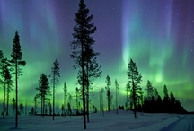 The Northern Lights / by DK Travel