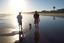 Ocean Isle Beach, Sunset Beach and Holden Beach,North Carolina / Ocean Isle Beach and the Brunswick Islands is where I call home!  Great places to visit and greater places to call home! www.wyndibythesea.com   wyndi@atmc.net   910-443-1170 / by Wyndi Gundrum-Cooper