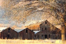 Barns, Bridges, and Buildings / by Mary Musil