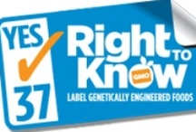 GMOs and Your Right to Know / by Mary's Gone Crackers