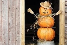 Fall/Thanksgiving Decorating Ideas / by Kara-My3Sons
